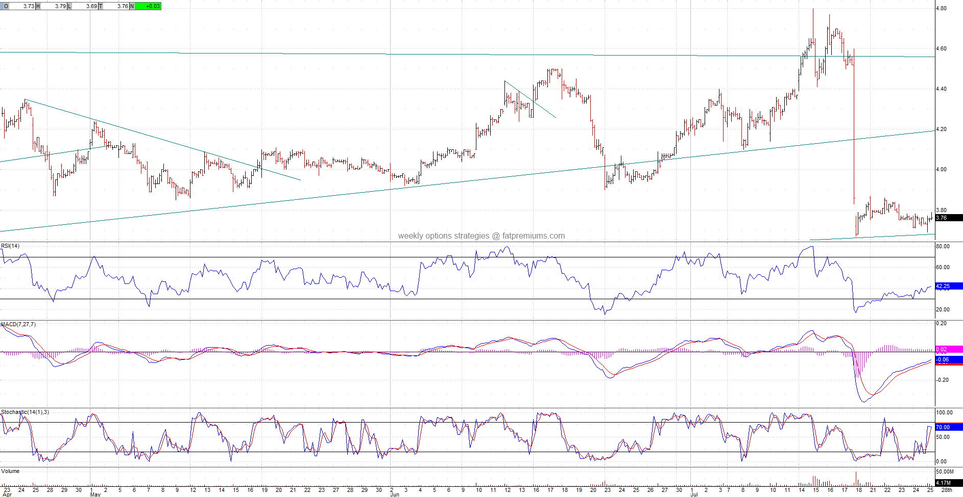 Advanced Micro Devices (NYSE:AMD) Hourly Chart (2014-07-25) Bullish
