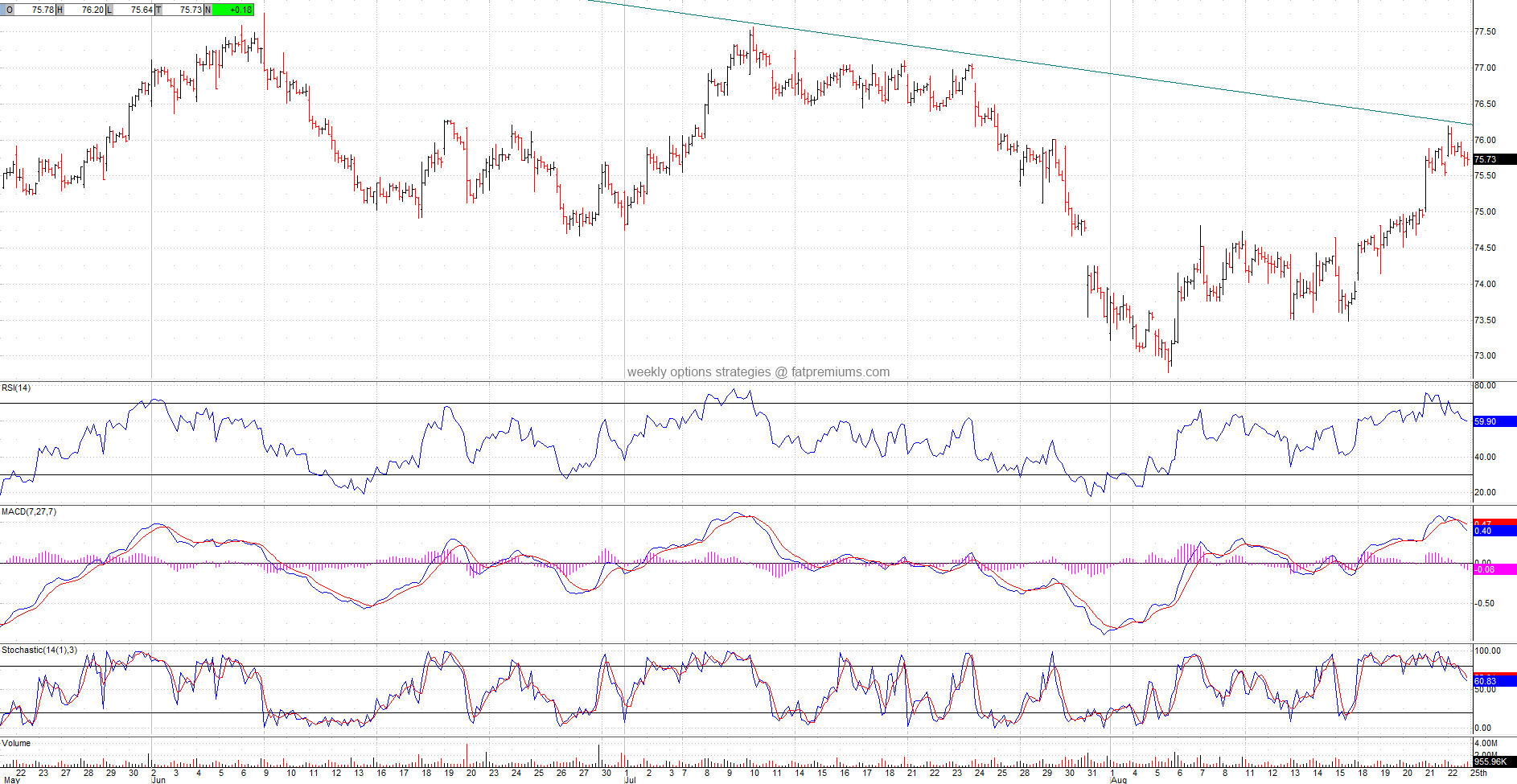 Wal-Mart Stores (NYSE:WMT) Hourly Chart (2014-08-23) Bearish